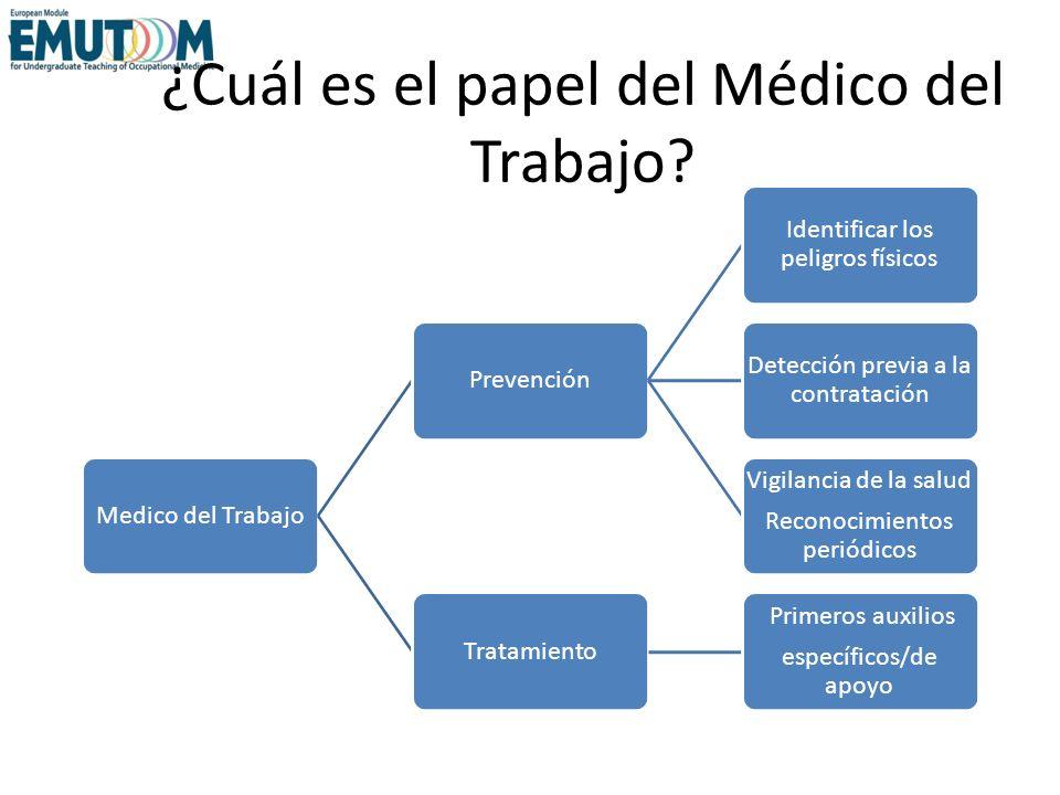 ¿Cuál es el papel del Médico del Trabajo? Medico del TrabajoPrevención Identificar los peligros físicos Detección previa a la contratación Vigilancia