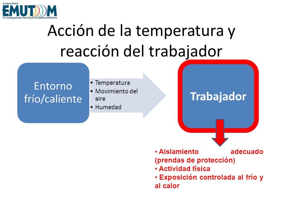 Acción de la temperatura y reacción del trabajador Temperatura Movimiento del aire Humedad Entorno frío/caliente Trabajador Aislamiento adecuado (pren