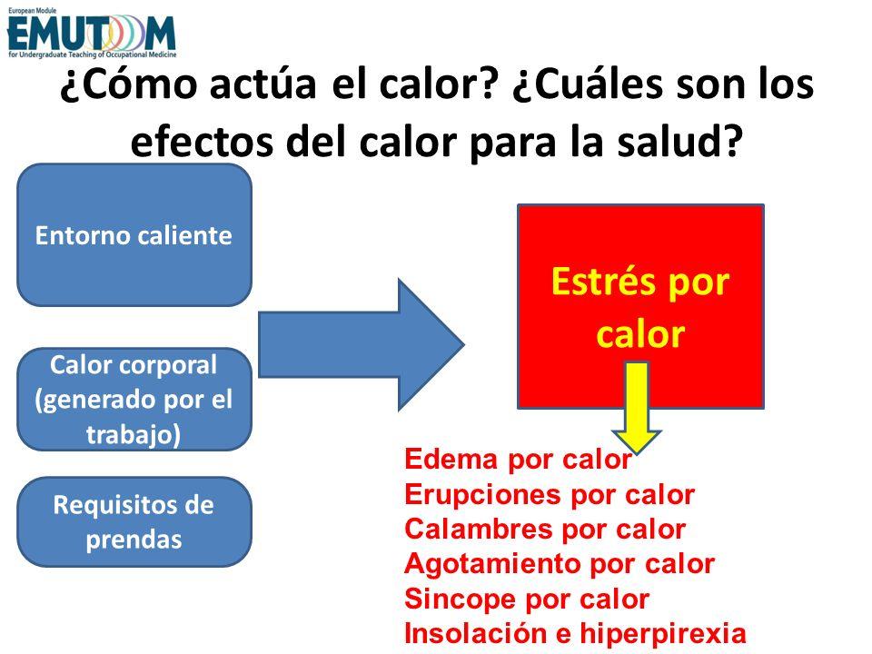 ¿Cómo actúa el calor? ¿Cuáles son los efectos del calor para la salud? Calor corporal (generado por el trabajo) Requisitos de prendas Entorno caliente