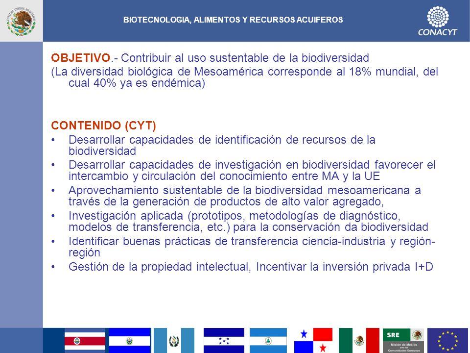 16 NANOTECNOLOGIA Antecedentes En la región Mesoamericana se cuenta con alrededor de 1200 investigadores en la temática de nanotecnología y 150 empresas en la región ya utilizan nanomateriales.