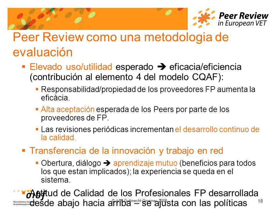 18 © öibf, Gutknecht-Gmeiner 2008 Peer Review como una metodologia de evaluación Elevado uso/utilidad esperado eficacia/eficiencia (contribución al elemento 4 del modelo CQAF): Responsabilidad/propiedad de los proveedores FP aumenta la eficàcia.
