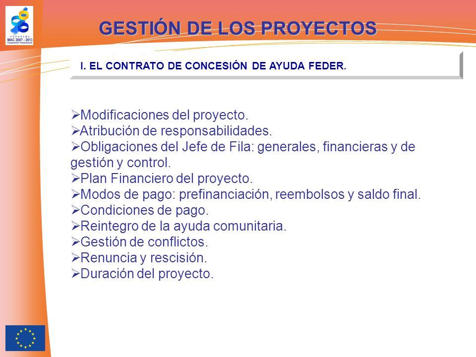 Modificaciones del proyecto. Atribución de responsabilidades. Obligaciones del Jefe de Fila: generales, financieras y de gestión y control. Plan Finan