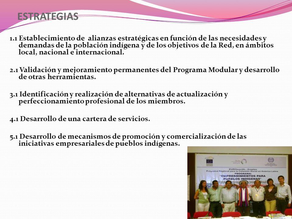 ESTRATEGIAS 1.1 Establecimiento de alianzas estratégicas en función de las necesidades y demandas de la población indígena y de los objetivos de la Re