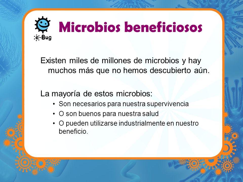 Microbios beneficiosos Existen miles de millones de microbios y hay muchos más que no hemos descubierto aún. La mayoría de estos microbios: Son necesa