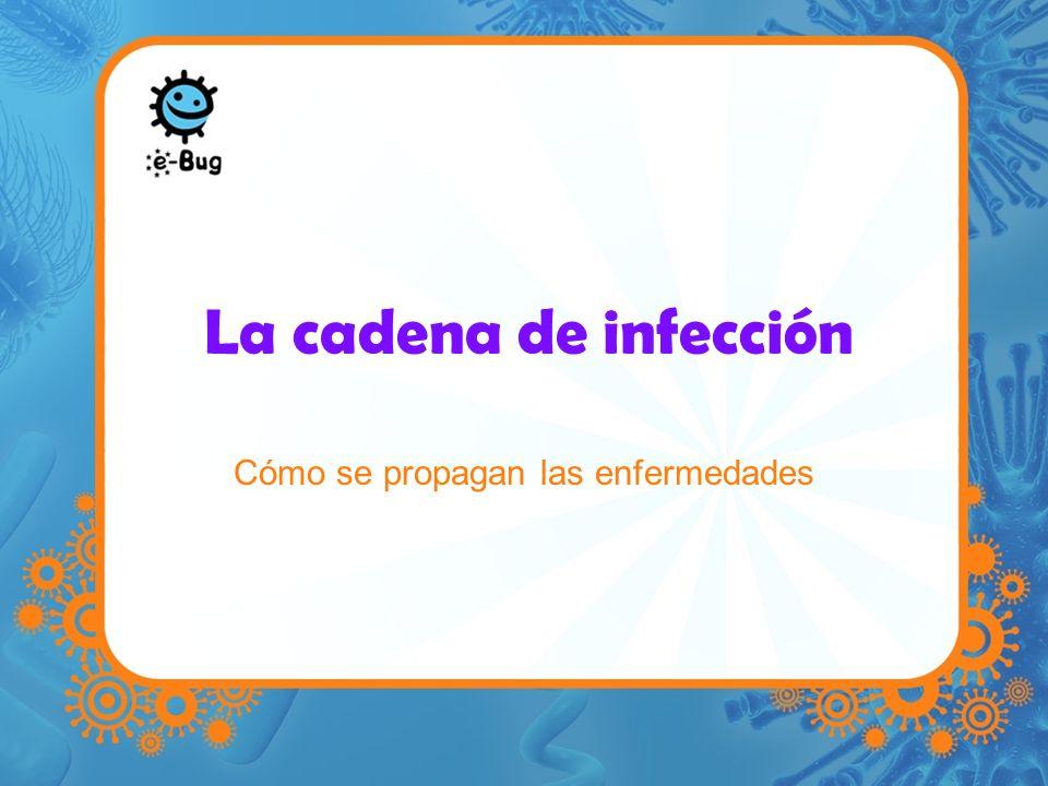 La cadena de infección Fuente de infección Tiene que haber algo o alguien que transporta los microbios perjudiciales y provoca la infección.