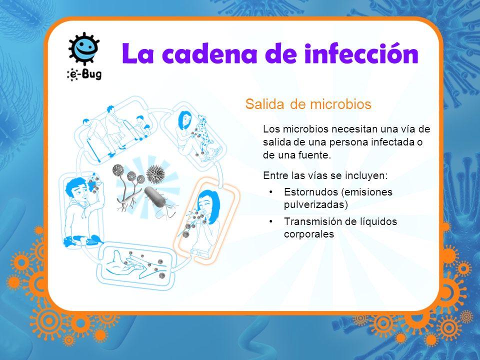 La cadena de infección Salida de microbios Los microbios necesitan una vía de salida de una persona infectada o de una fuente. Entre las vías se inclu
