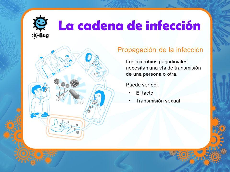 La cadena de infección Propagación de la infección Los microbios perjudiciales necesitan una vía de transmisión de una persona o otra. Puede ser por: