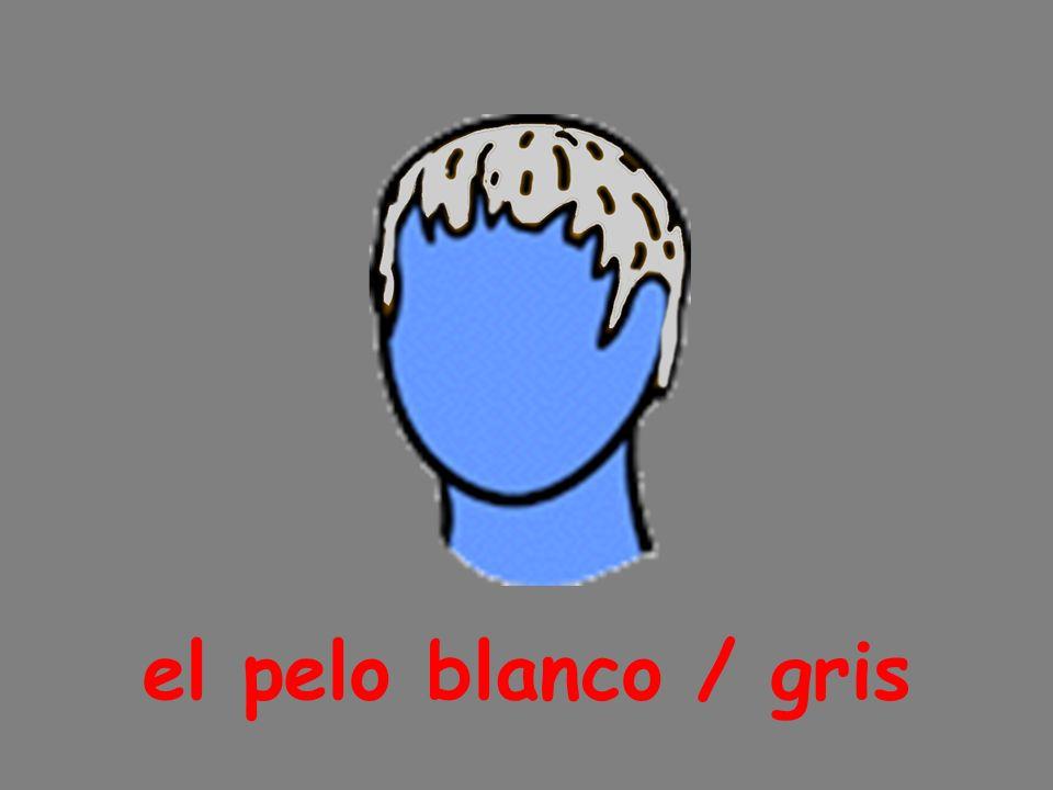 el pelo blanco / gris