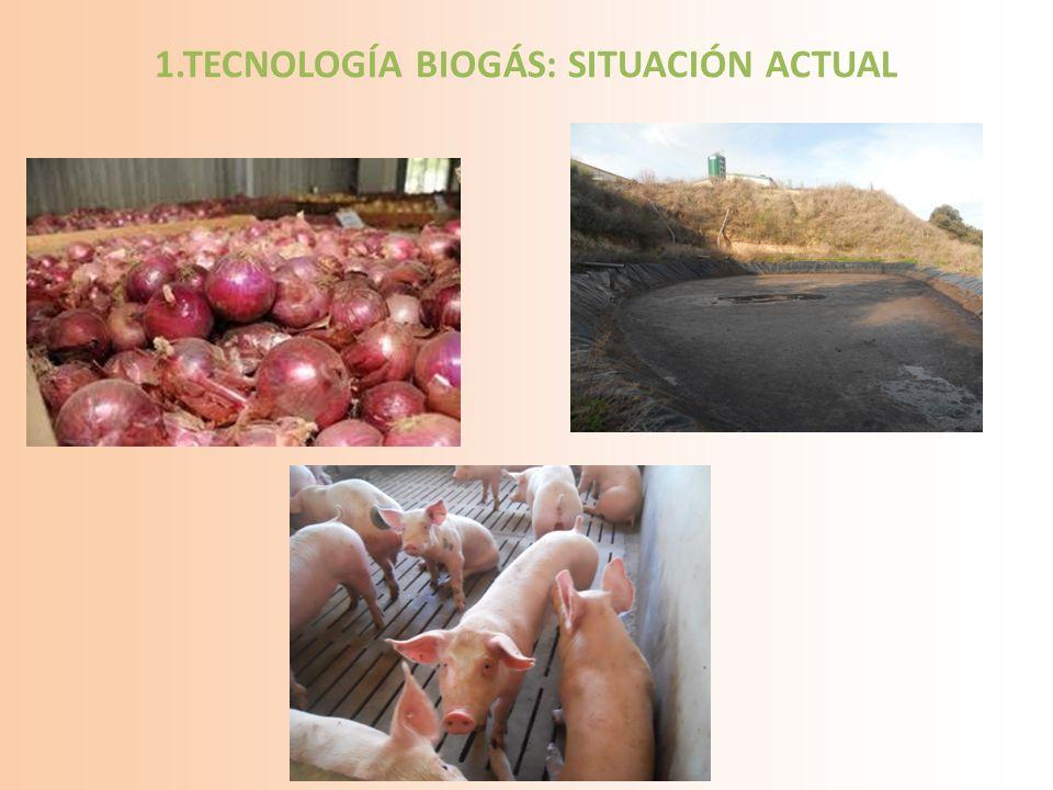 1.TECNOLOGÍA BIOGÁS: SITUACIÓN ACTUAL