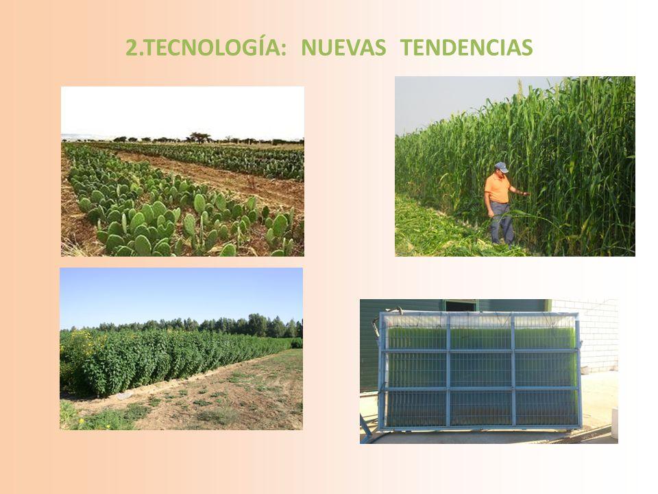 2.TECNOLOGÍA: NUEVAS TENDENCIAS