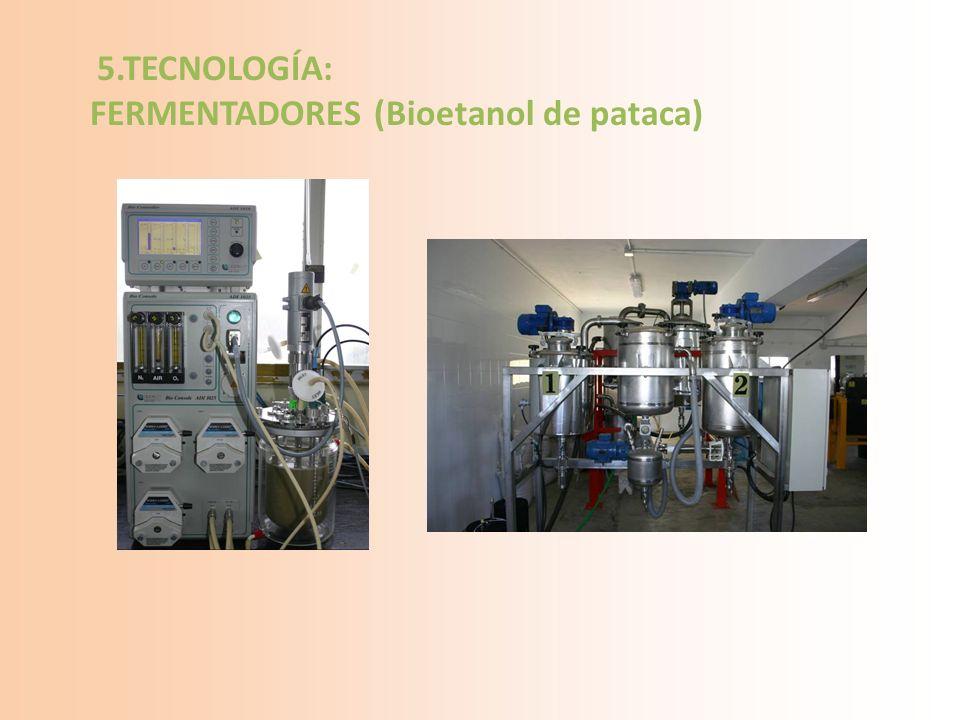 5.TECNOLOGÍA: FERMENTADORES (Bioetanol de pataca)