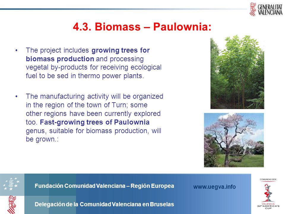 Fundación Comunidad Valenciana – Región Europea Delegación de la Comunidad Valenciana en Bruselas www.uegva.info 4.3. Biomass – Paulownia: The project