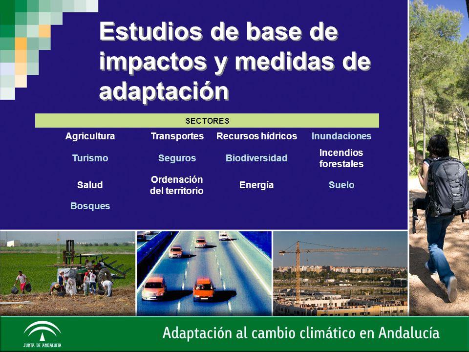 Estudios de base de impactos y medidas de adaptación SECTORES AgriculturaTransportesRecursos hídricosInundaciones TurismoSegurosBiodiversidad Incendio