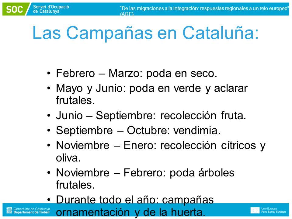 Las Campañas en Cataluña: Febrero – Marzo: poda en seco.