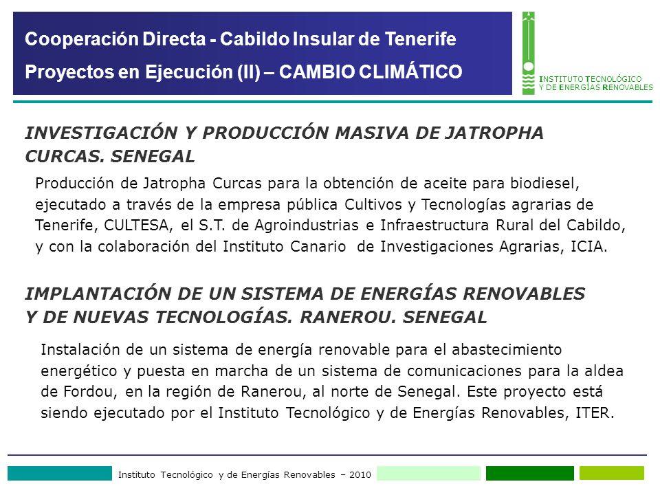 Instituto Tecnológico y de Energías Renovables – 2010 INSTITUTO TECNOLÓGICO Y DE ENERGÍAS RENOVABLES Producción de Jatropha Curcas para la obtención de aceite para biodiesel, ejecutado a través de la empresa pública Cultivos y Tecnologías agrarias de Tenerife, CULTESA, el S.T.