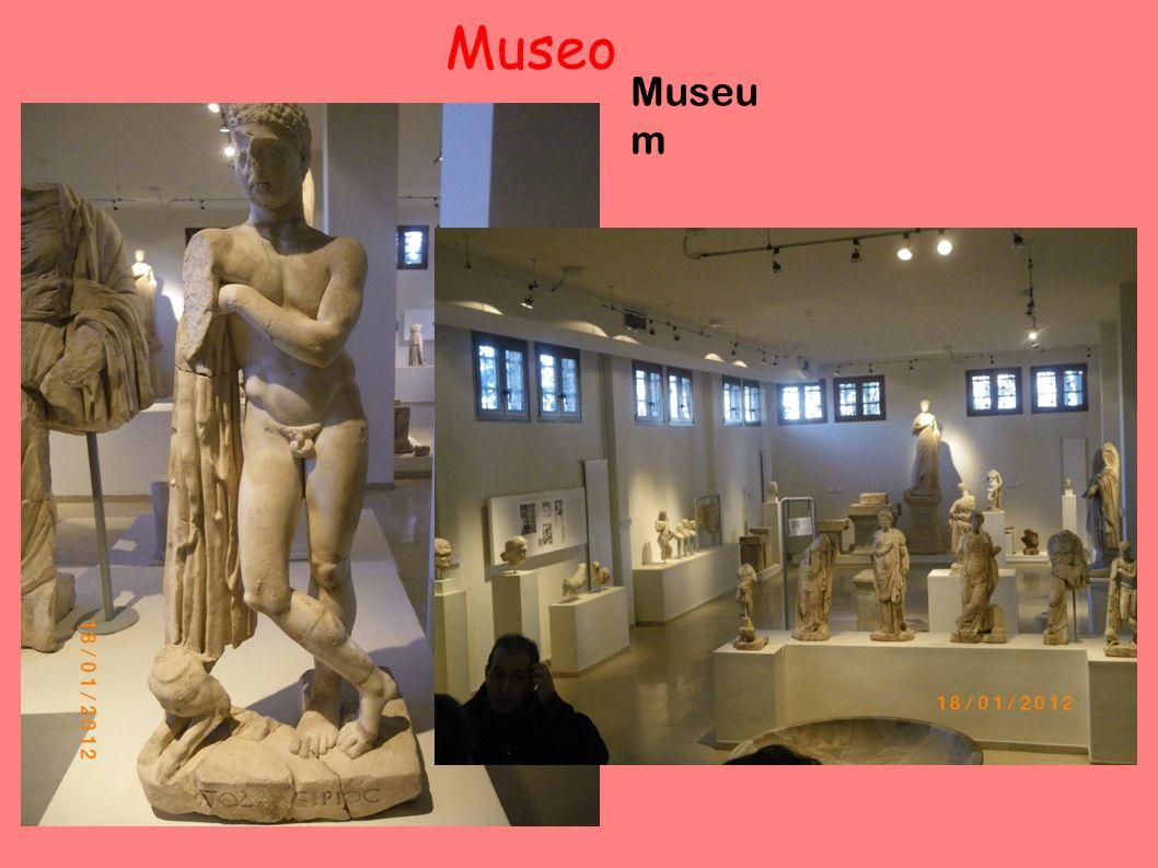 Museo Museu m