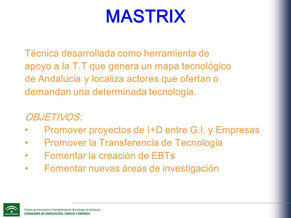 MASTRIX Técnica desarrollada como herramienta de apoyo a la T.T que genera un mapa tecnológico de Andalucía y localiza actores que ofertan o demandan una determinada tecnología.