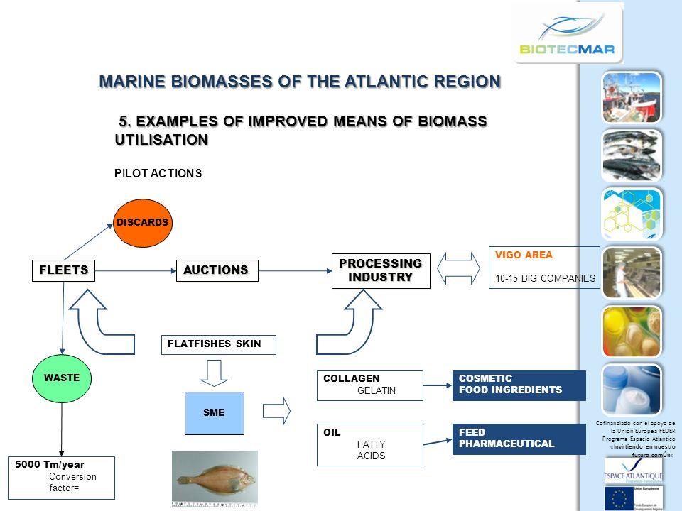Cofinanciado con el apoyo de la Unión Europea FEDER Programa Espacio Atlántico «Invirtiendo en nuestro futuro comÚn» MARINE BIOMASSES OF THE ATLANTIC REGION 5.