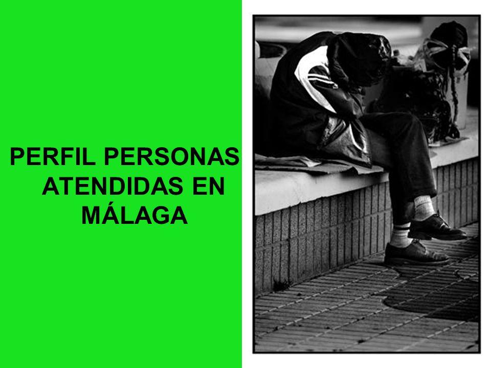 PERFIL DE LAS PSH CON TMG ATENDIDAS EN MALAGA PERFIL PERSONAS ATENDIDAS EN MÁLAGA