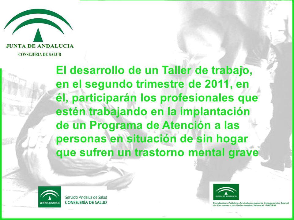El desarrollo de un Taller de trabajo, en el segundo trimestre de 2011, en él, participarán los profesionales que estén trabajando en la implantación
