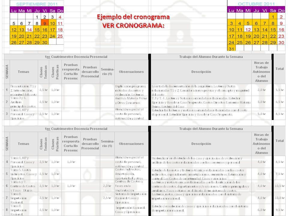 Ejemplo del cronograma VER CRONOGRAMA: