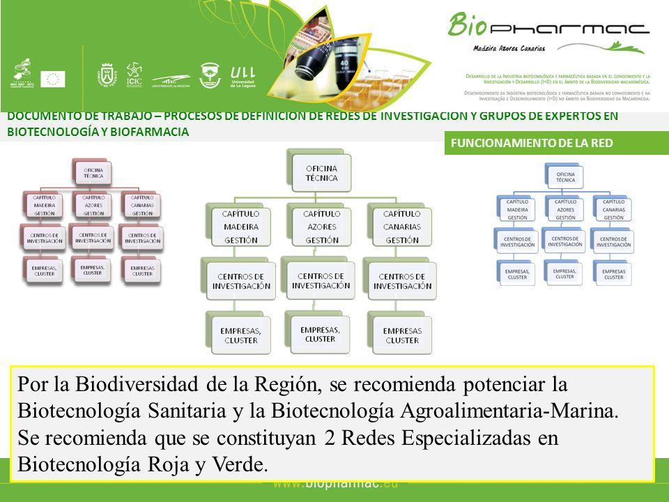 DOCUMENTO DE TRABAJO – PROCESOS DE DEFINICIÓN DE REDES DE INVESTIGACIÓN Y GRUPOS DE EXPERTOS EN BIOTECNOLOGÍA Y BIOFARMACIA FUNCIONAMIENTO DE LA RED Universidades y Centros de Investigación Organismo de Apoyo a la Transferencia de Conocimiento Responsable de Labores CientíficasResponsable de Comunicar los avances en las Investigaciones Responsable de Divulgar los avances Científicos al Tejido Empresarial Responsable de Fomentar la Creación de EBTs Responsable de Comunicar los avances en las Investigaciones Responsable de Realizar Valoraciones Tecnológicas y Científicas Responsable de Internacionalizar los productos/servicios alcanzados Responsable de Comunicar los avances en las Investigaciones
