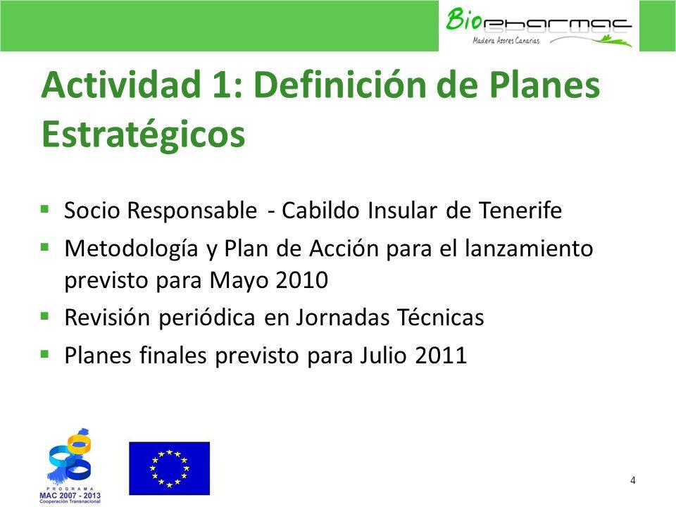 Actividad 1: Definición de Planes Estratégicos Socio Responsable - Cabildo Insular de Tenerife Metodología y Plan de Acción para el lanzamiento previs