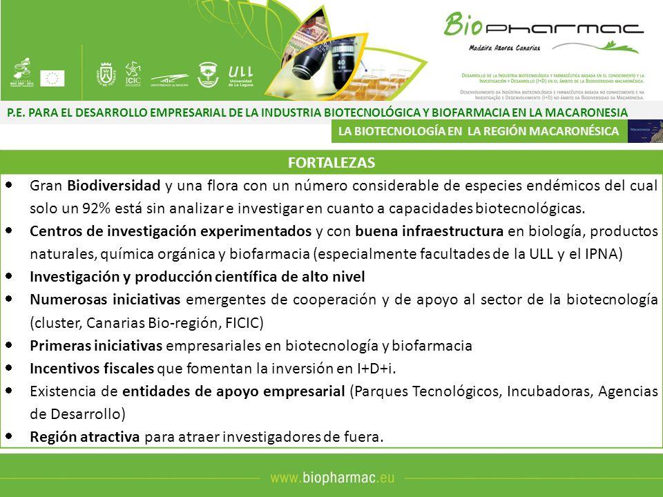 P.E. PARA EL DESARROLLO EMPRESARIAL DE LA INDUSTRIA BIOTECNOLÓGICA Y BIOFARMACIA EN LA MACARONESIA LA BIOTECNOLOGÍA EN LA REGIÓN MACARONÉSICA FORTALEZ