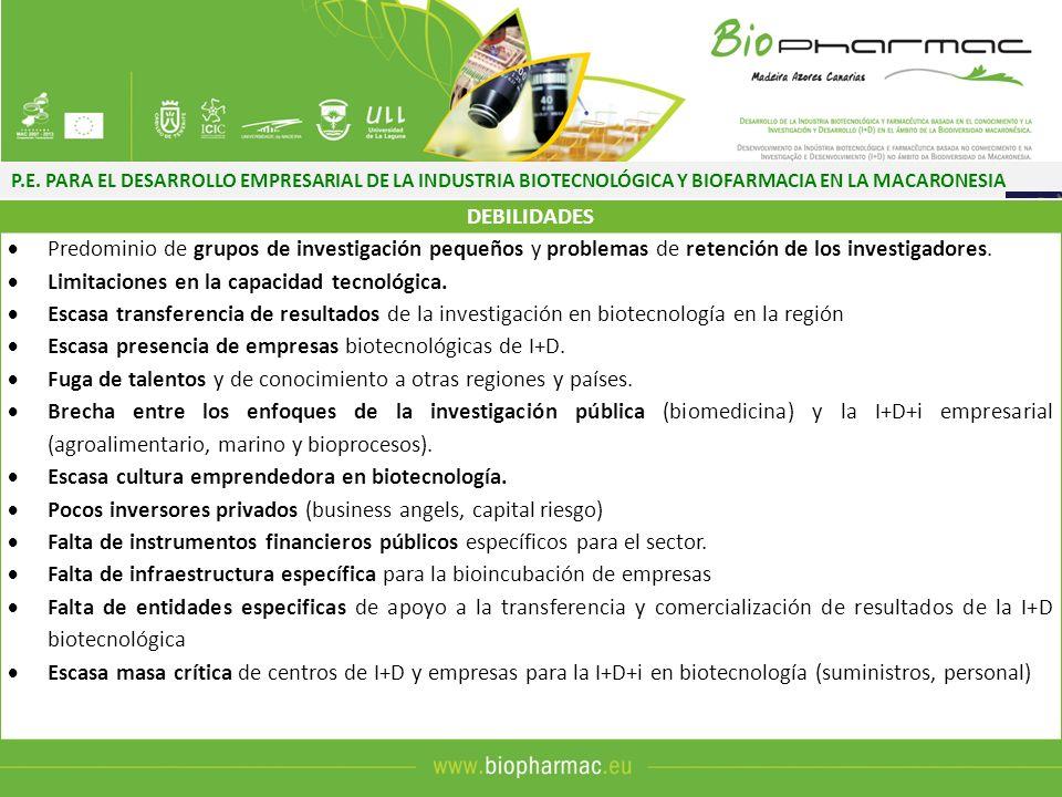 P.E. PARA EL DESARROLLO EMPRESARIAL DE LA INDUSTRIA BIOTECNOLÓGICA Y BIOFARMACIA EN LA MACARONESIA DEBILIDADES Predominio de grupos de investigación p