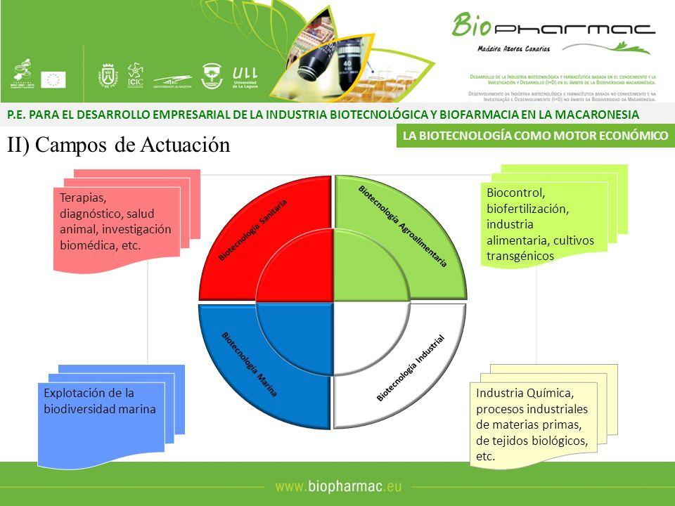 P.E. PARA EL DESARROLLO EMPRESARIAL DE LA INDUSTRIA BIOTECNOLÓGICA Y BIOFARMACIA EN LA MACARONESIA II) Campos de Actuación Terapias, diagnóstico, salu