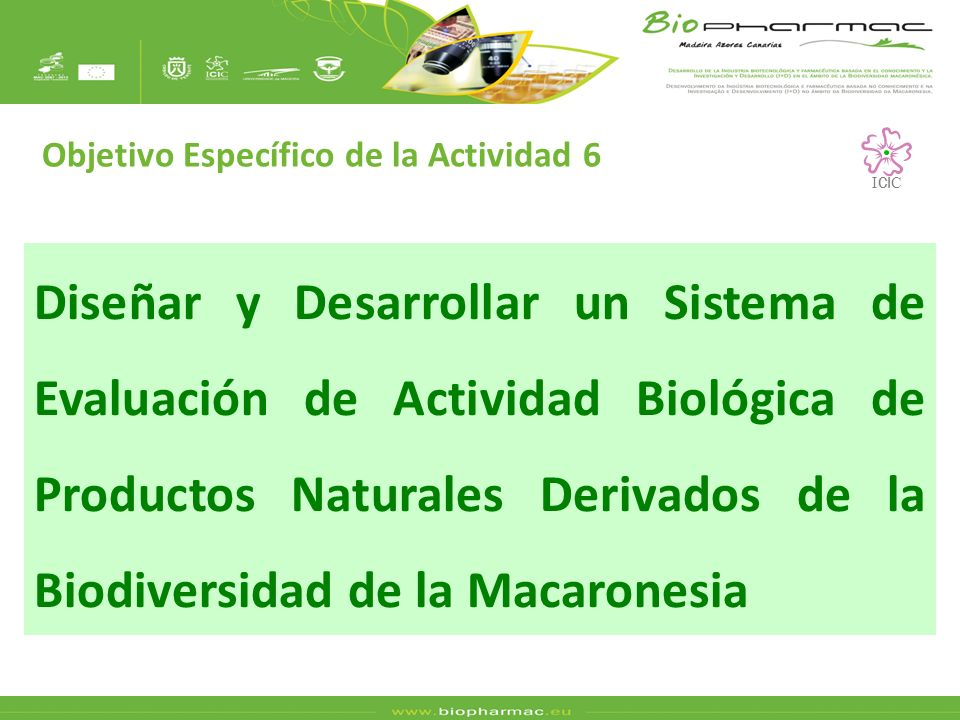 Diseñar y Desarrollar un Sistema de Evaluación de Actividad Biológica de Productos Naturales Derivados de la Biodiversidad de la Macaronesia Objetivo Específico de la Actividad 6 I CI C