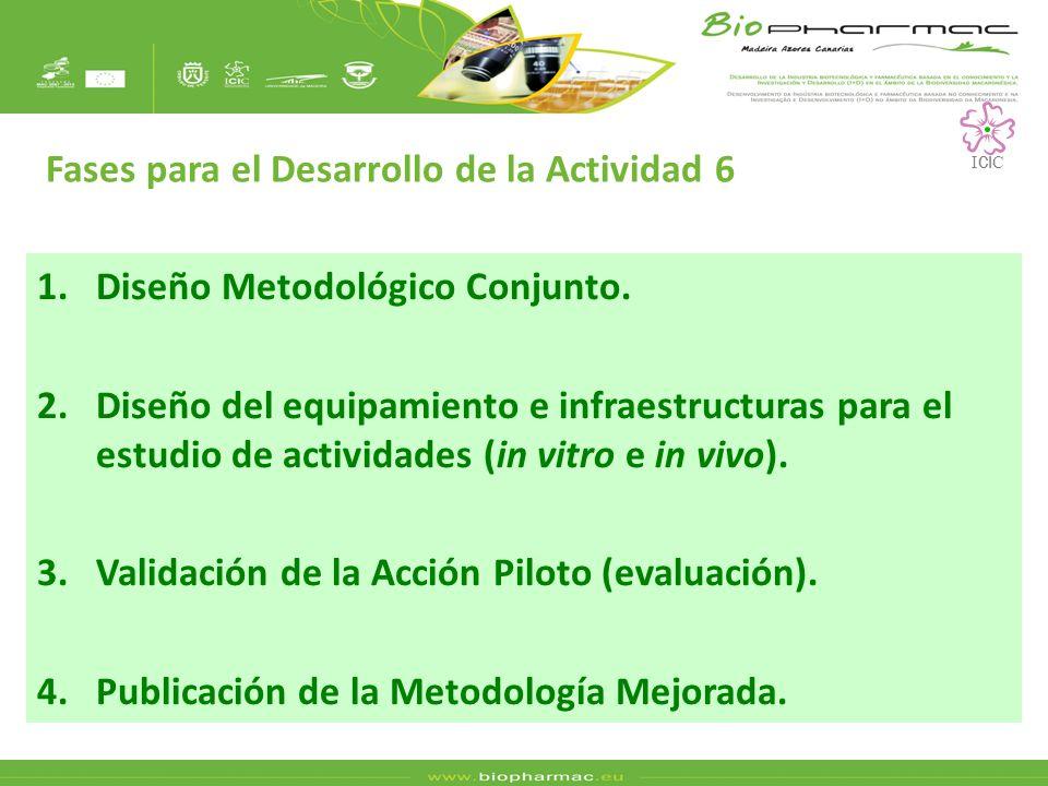 1.Diseño Metodológico Conjunto. 2.Diseño del equipamiento e infraestructuras para el estudio de actividades (in vitro e in vivo). 3.Validación de la A