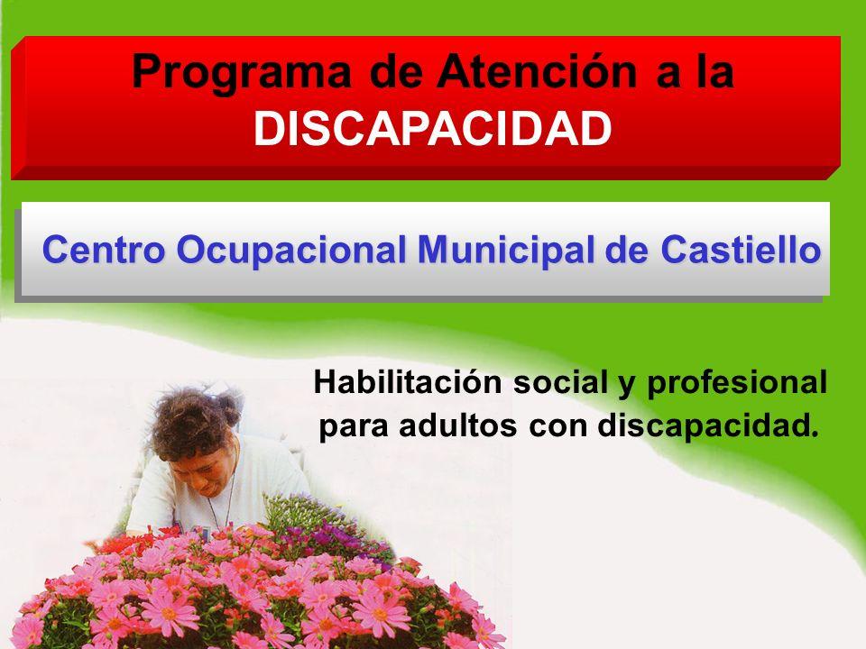 Programa de Atención a la DISCAPACIDAD Habilitación social y profesional para adultos con discapacidad.