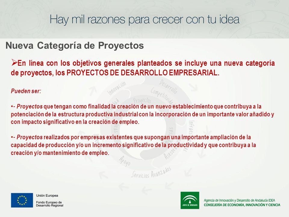 Nueva Categoría de Proyectos En línea con los objetivos generales planteados se incluye una nueva categoría de proyectos, los PROYECTOS DE DESARROLLO