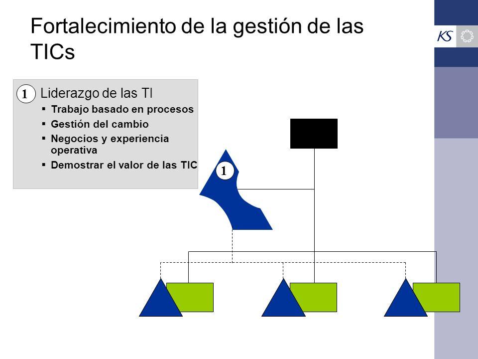 Fortalecimiento de la gestión de las TICs 1 Trabajo basado en procesos Gestión del cambio Negocios y experiencia operativa Demostrar el valor de las T