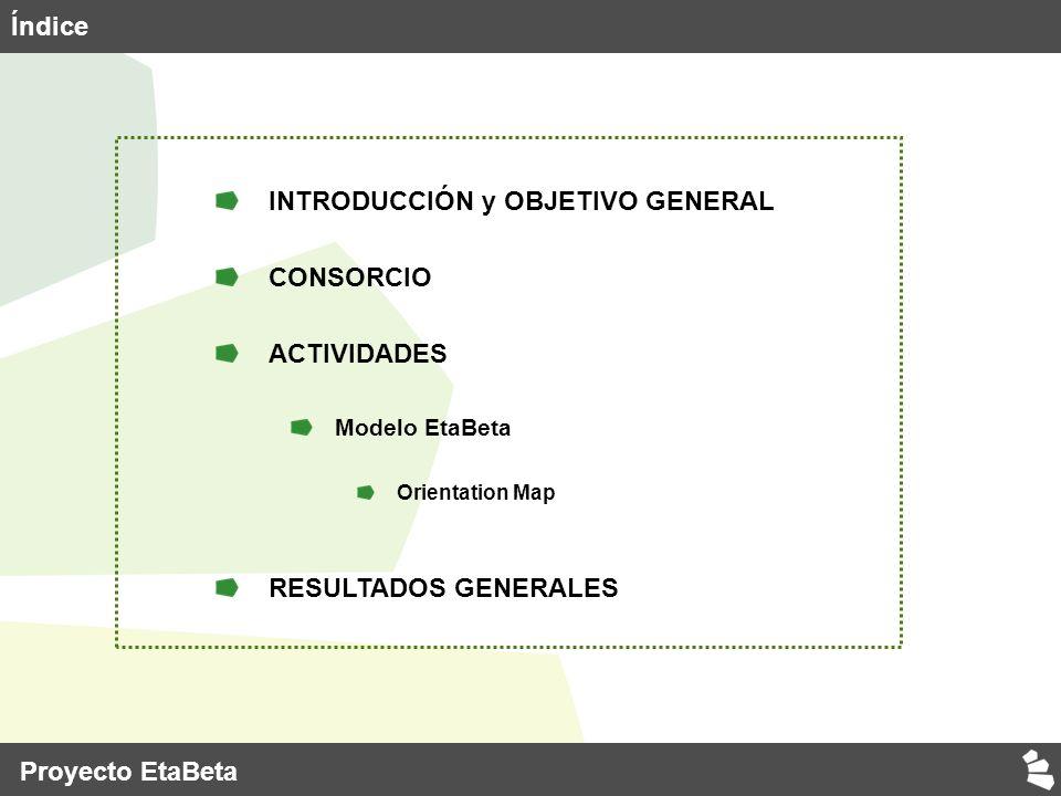Proyecto EtaBeta Índice INTRODUCCIÓN y OBJETIVO GENERAL CONSORCIO ACTIVIDADES Modelo EtaBeta Orientation Map RESULTADOS GENERALES