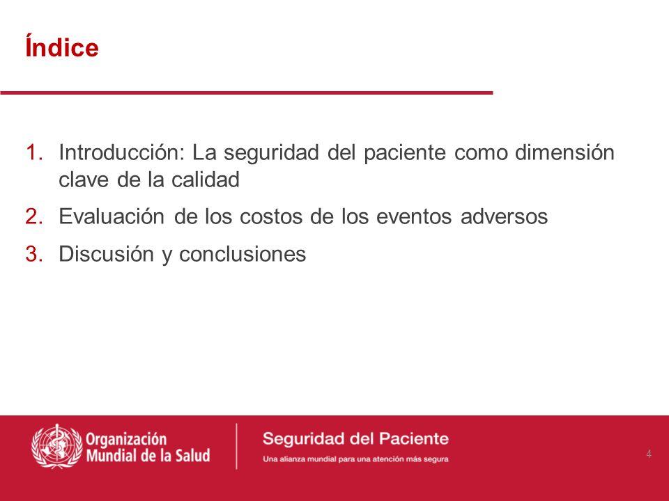 Índice 1.Introducción: La seguridad del paciente como dimensión clave de la calidad 2.Evaluación de los costos de los eventos adversos 3.Discusión y conclusiones 4