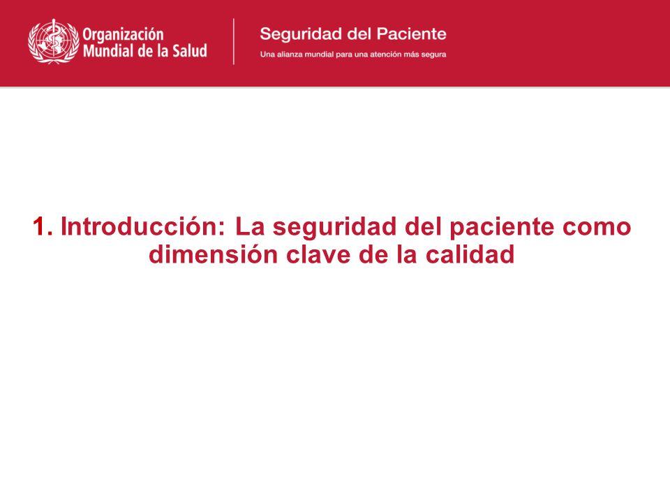 Índice 1.Introducción: La seguridad del paciente como dimensión clave de la calidad 2.Evaluación de los costos de los eventos adversos 3.Discusión y c
