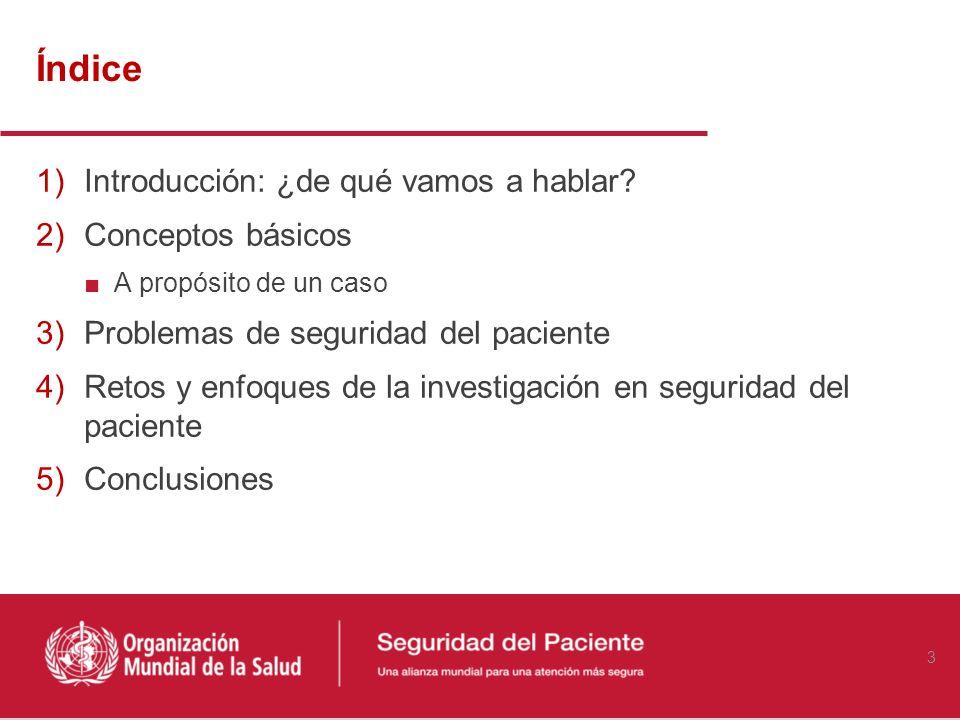 Objetivos del curso Describir los conceptos fundamentales relacionados con la seguridad del paciente Explorar áreas, prioridades y métodos de investig