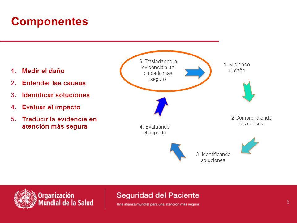 Componentes 5. Trasladando la evidencia a un cuidado mas seguro 1. Midiendo el daño 4. Evaluando el impacto 3. Identificando soluciones 2.Comprendiend