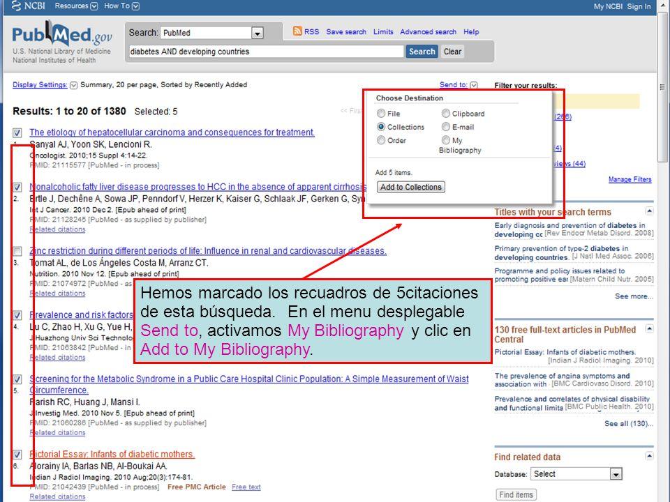 Hemos marcado los recuadros de 5citaciones de esta búsqueda. En el menu desplegable Send to, activamos My Bibliography y clic en Add to My Bibliograph