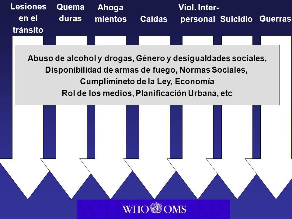 Health Trans port Interior Police Abuso de alcohol y drogas, Género y desigualdades sociales, Disponibilidad de armas de fuego, Normas Sociales, Cumpl