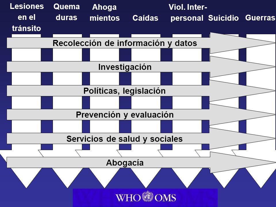 Health Trans port Interior Police Recolección de información y datos Investigación Políticas, legislación Prevención y evaluación Servicios de salud y