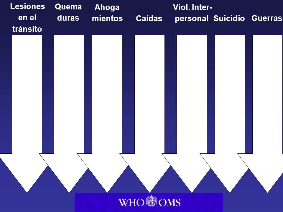 Health Trans port Interior Police Lesiones en el tránsito Caídas Quema duras Ahoga mientos Suicidio Viol.