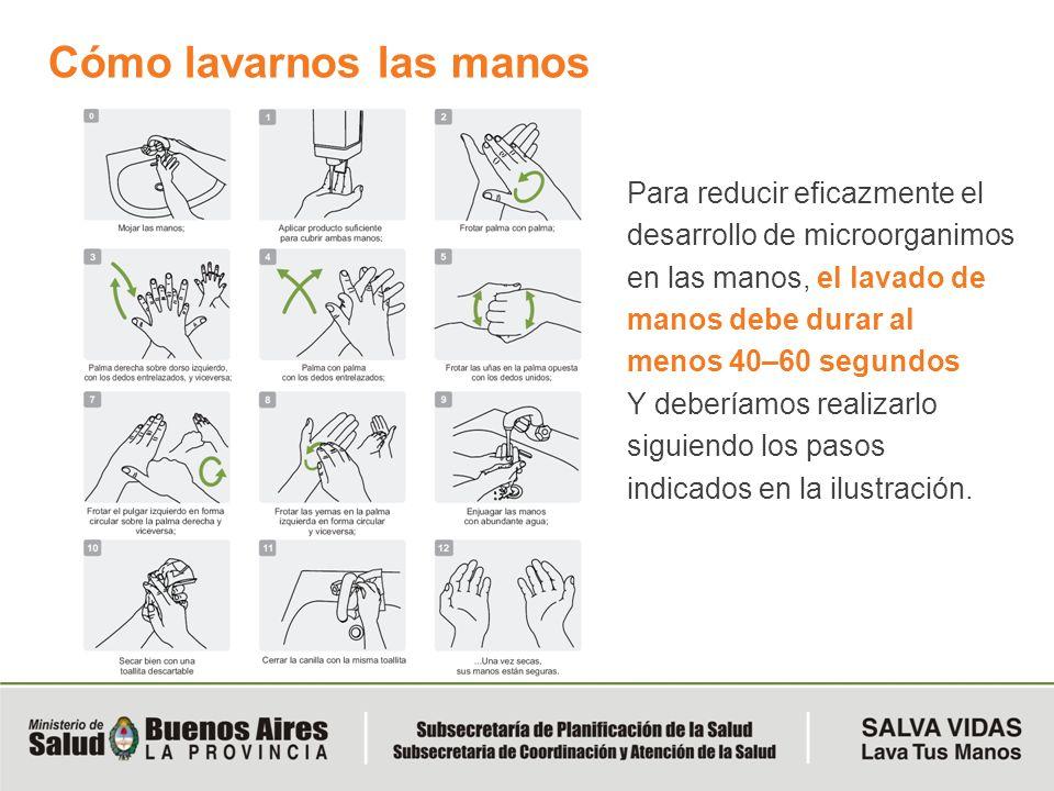 Cómo lavarnos las manos Para reducir eficazmente el desarrollo de microorganimos en las manos, el lavado de manos debe durar al menos 40–60 segundos Y
