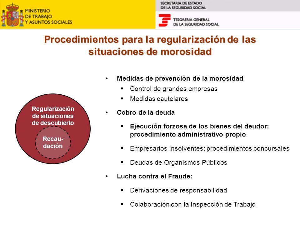 Procedimientos para la regularización de las situaciones de morosidad Medidas de prevención de la morosidad Control de grandes empresas Medidas cautel