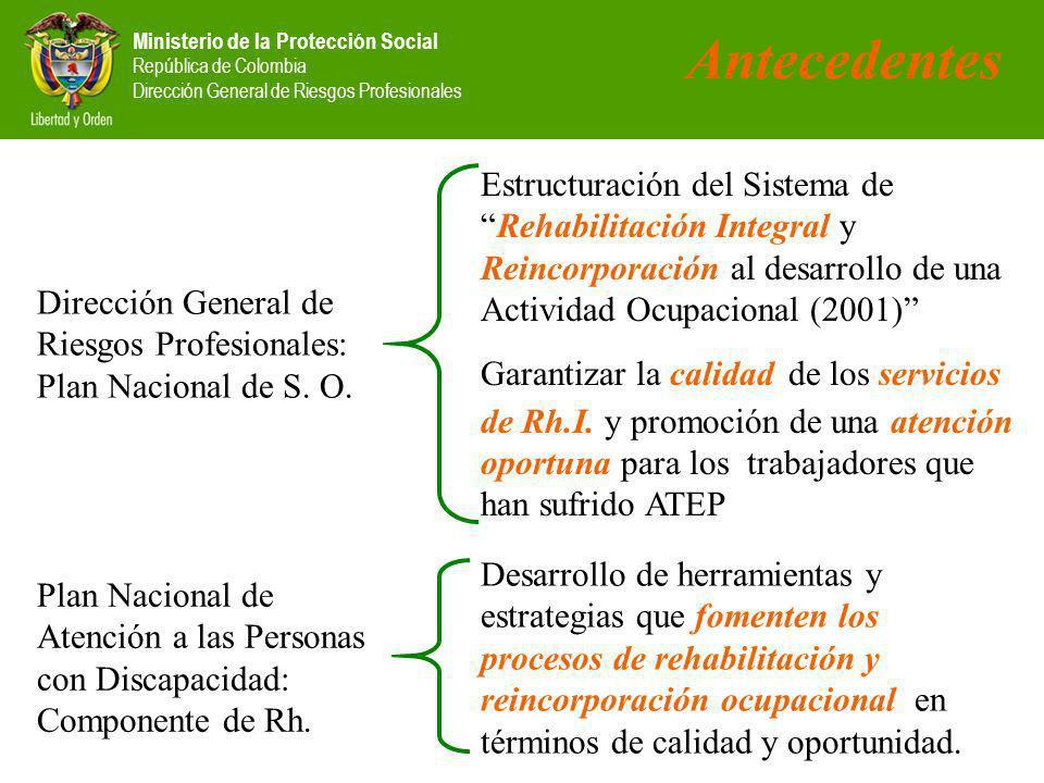 Ministerio de la Protección Social República de Colombia Dirección General de Riesgos Profesionales Antecedentes Dirección General de Riesgos Profesionales: Plan Nacional de S.