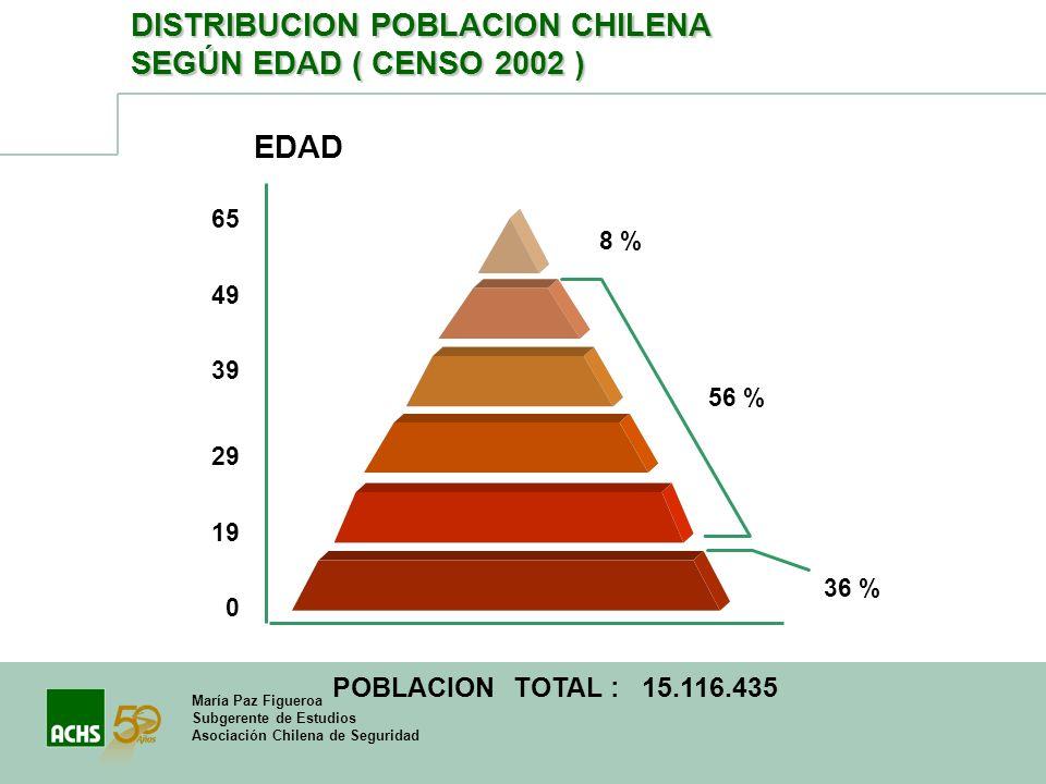 María Paz Figueroa Subgerente de Estudios Asociación Chilena de Seguridad DISTRIBUCION POBLACION CHILENA SEGÚN EDAD ( CENSO 2002 ) EDAD 0 19 29 39 49