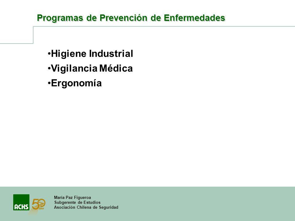 María Paz Figueroa Subgerente de Estudios Asociación Chilena de Seguridad Programas de Prevención de Enfermedades Higiene Industrial Vigilancia Médica