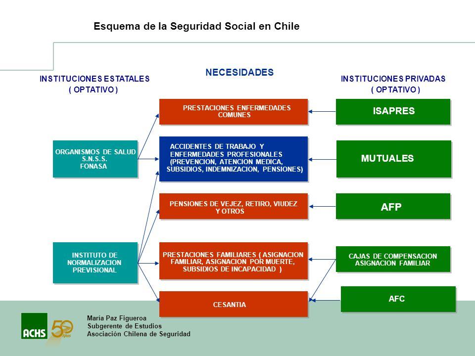 María Paz Figueroa Subgerente de Estudios Asociación Chilena de Seguridad INSTITUCIONES ESTATALES ( OPTATIVO ) INSTITUCIONES PRIVADAS ( OPTATIVO ) ORG
